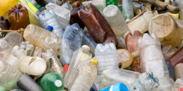 Encourage San Francisco to Ban Plastic Water Bottles