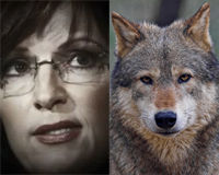 Tell Discovery to Pull Sarah Palin's Show!