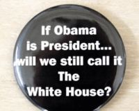 Tell the Texas GOP to Apologize for Racist Obama Pin