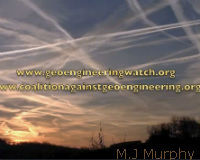 Chemtrails or Contrails? Give Us the Real Deal!