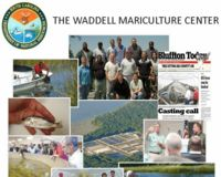HELP SAVE SCDNR'S WADDELL MARICULTURE CENTER