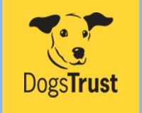 Sponsor A Dog for Just 1 Pound A Week With Dogstrust UK