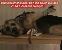 Stop The Sexual Abuse Of Animals!