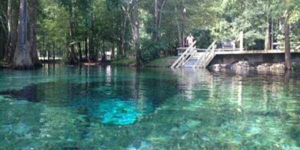 Ginnie Springs in Florida