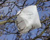 Ban Plastic Bags in Oregon