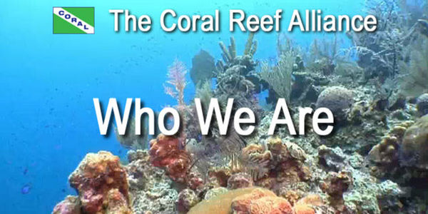 Help Support The Coral Reef Conservation Act