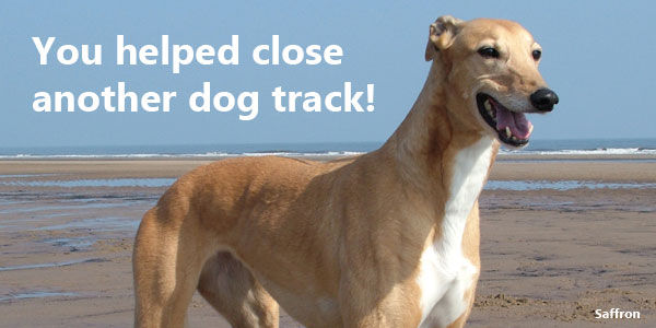 You helped close another dog track!‏