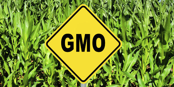 Tell the EPA to Deny Approval of Monsanto & Dow's New GMOs!